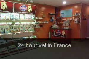 24 hour vet in France