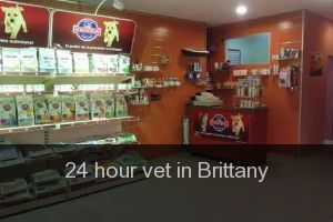 24 hour vet in Brittany