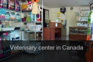 Veterinary center in Canada