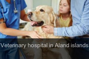 Veterinary hospital in Aland islands