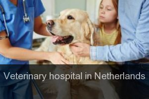 Veterinary hospital in Netherlands